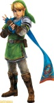 Hyrule Warriors Screenshot, Link, Wii U